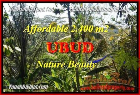 JUAL TANAH di UBUD 2.400 m2 View Kebun dan tebing