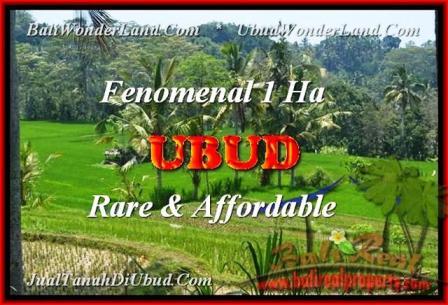 TANAH DIJUAL di UBUD BALI 100 Are di Ubud Pejeng