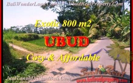 JUAL MURAH TANAH di UBUD BALI 800 m2 View Sawah dan pangkung