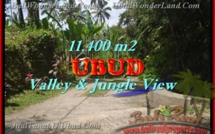 TANAH di UBUD BALI DIJUAL Untuk INVESTASI TJUB431