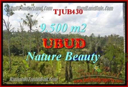 TANAH MURAH di UBUD 9,500 m2 di Ubud Payangan