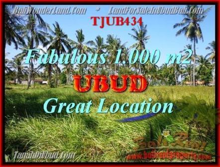 TANAH JUAL MURAH UBUD BALI 10 Are View kebun