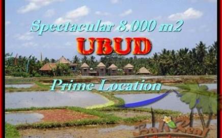TANAH MURAH di UBUD 8.000 m2 View Sawah, Sungai, Gunung
