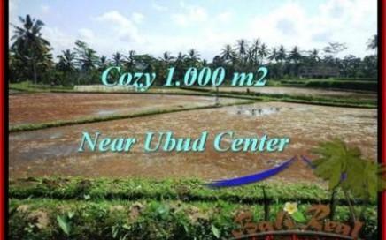 DIJUAL TANAH MURAH di UBUD 1,000 m2 di Sentral Ubud