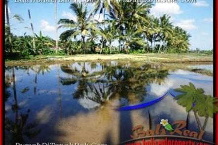 TANAH JUAL MURAH UBUD 10 Are View Sawah dan sungai kecil link Villa