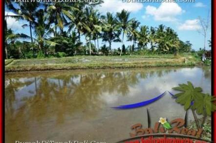 TANAH di UBUD JUAL 1,000 m2 View Sawah dan sungai kecil link Villa