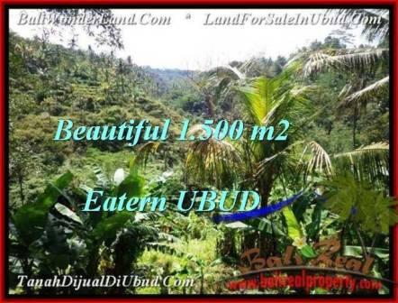 JUAL MURAH TANAH di UBUD Untuk INVESTASI TJUB503