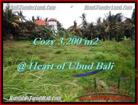 DIJUAL TANAH di UBUD BALI Untuk INVESTASI TJUB510
