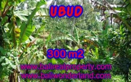 JUAL TANAH di UBUD BALI 3 Are View kebun alami