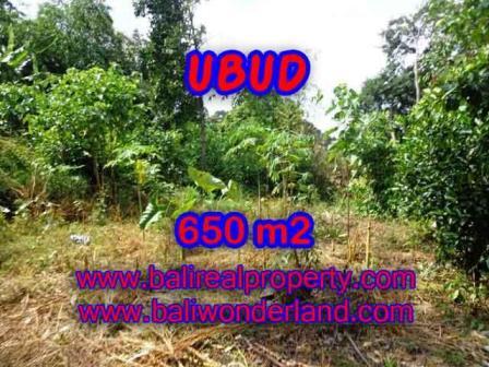 TANAH MURAH di UBUD BALI 6.5 Are di Sentral Ubud