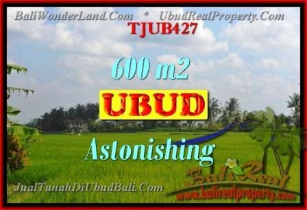 TANAH MURAH di UBUD BALI 6 Are View sungai dan sawah
