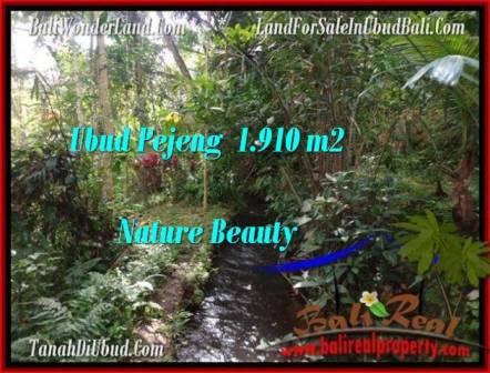 TANAH di UBUD JUAL 1,910 m2 View Tebing dan sungai kecil
