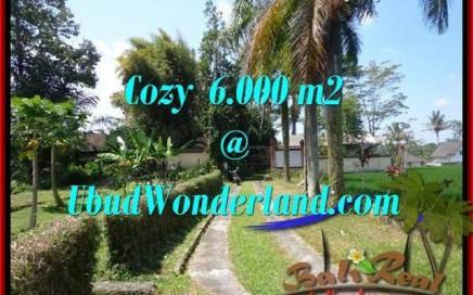 JUAL TANAH di UBUD BALI 60 Are View Sawah link Villa
