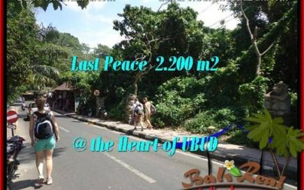 JUAL MURAH TANAH di UBUD 2,200 m2 di Sentral Ubud
