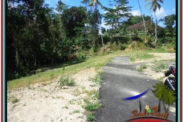 JUAL MURAH TANAH di UBUD 570 m2 di Ubud Tampak Siring