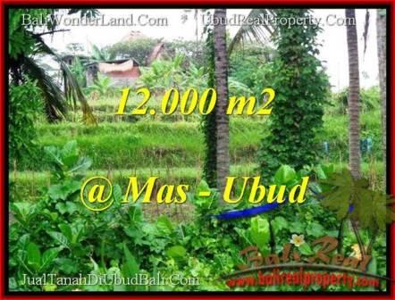 TANAH JUAL MURAH UBUD 12,000 m2 View sawah dan sungai