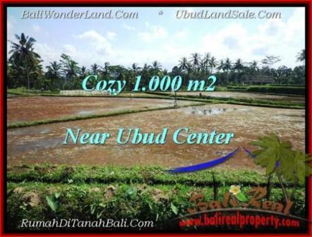 TANAH MURAH di UBUD BALI 1,000 m2 di Sentral Ubud