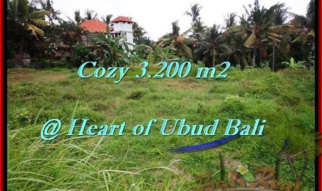DIJUAL TANAH di UBUD 32 Are di Sentral Ubud