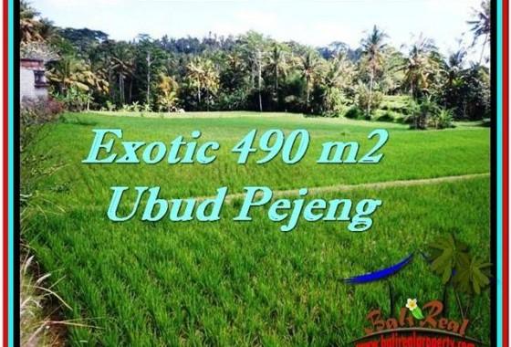 DIJUAL TANAH di UBUD 4.9 Are di Ubud Tampak Siring
