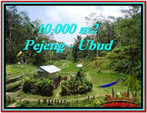 JUAL TANAH di UBUD BALI 10,000 m2  View Sawah, Kolam, Pancoran