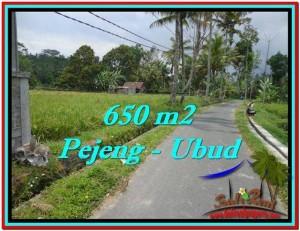 TANAH di UBUD DIJUAL 650 m2 di Ubud Tampak Siring