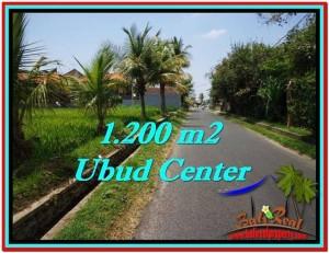 JUAL TANAH MURAH di UBUD BALI 1,200 m2  View Sawah, sungai kecil, link Villa