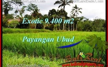 TANAH DIJUAL MURAH di UBUD 94 Are di Ubud Payangan