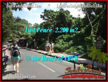 TANAH di UBUD BALI DIJUAL MURAH 2,200 m2 View Sungai link Villa