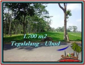 JUAL TANAH di UBUD BALI 1,700 m2  View Sawah