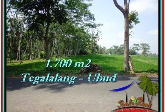 JUAL TANAH di UBUD 1,700 m2 View Sawah