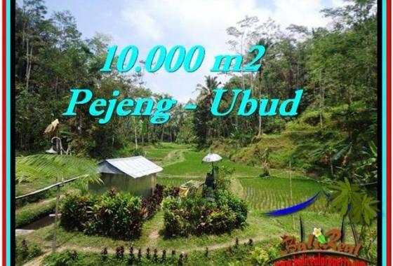 JUAL TANAH MURAH di UBUD 100 Are di Ubud Tampak Siring