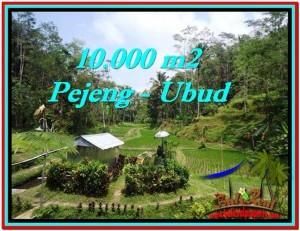 JUAL TANAH MURAH di UBUD BALI 100 Are di Ubud Tampak Siring
