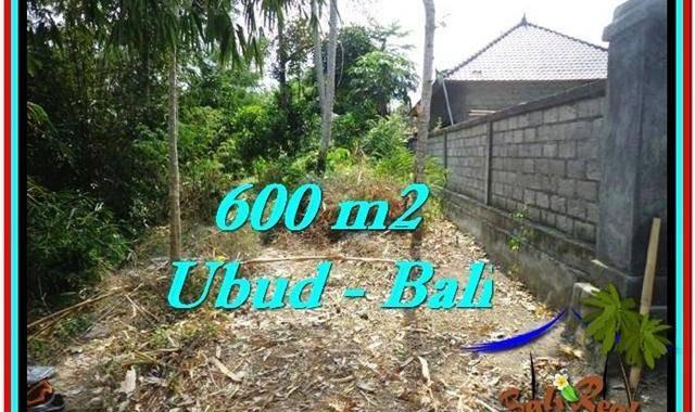 DIJUAL TANAH di UBUD BALI Untuk INVESTASI TJUB523