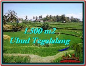 TANAH MURAH di UBUD BALI 1,500 m2 di Ubud Tegalalang