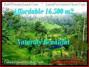 TANAH di UBUD DIJUAL 16,500 m2 di Ubud Tampak Siring