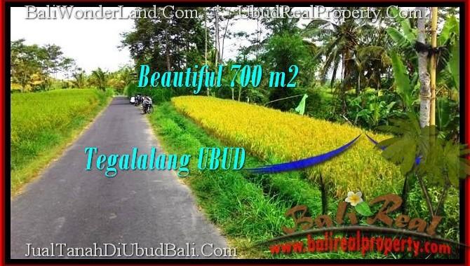 DIJUAL TANAH di UBUD BALI Untuk INVESTASI TJUB497