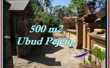 JUAL TANAH MURAH di UBUD BALI 500 m2 di Ubud Pejeng