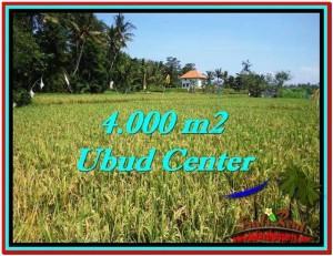 TANAH di UBUD BALI DIJUAL MURAH 4,000 m2 di Sentral Ubud