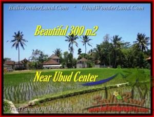JUAL TANAH MURAH di UBUD 300 m2  View sawah link villa