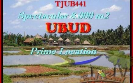 JUAL MURAH TANAH di UBUD 8.000 m2 View Sawah, Sungai, Gunung