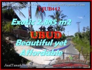 JUAL MURAH TANAH di UBUD 28,85 Are View Sawah dan sungai Kecil