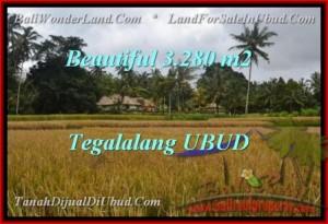 TANAH di UBUD BALI DIJUAL 3,280 m2 di Ubud Tegalalang