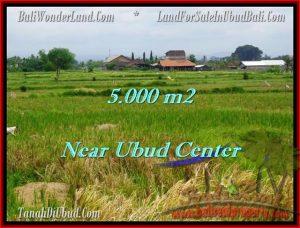 JUAL MURAH TANAH di UBUD 50 Are View sawah dan gunung