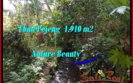 Beautiful PROPERTY LAND FOR SALE IN UBUD BALI TJUB504