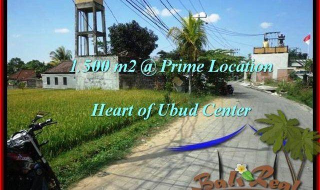 JUAL TANAH MURAH di UBUD 15 Are di Sentral Ubud