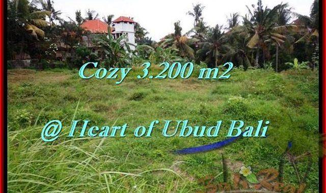 TANAH di UBUD BALI DIJUAL MURAH Untuk INVESTASI TJUB510