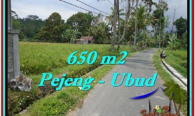 JUAL TANAH di UBUD BALI 6.5 Are di Ubud Tampak Siring