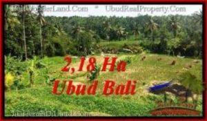 TANAH MURAH di UBUD BALI DIJUAL 218 Are View Sawah dan sungai ayung, link. villa