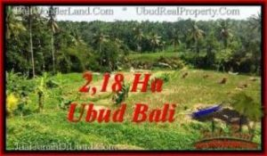 TANAH di UBUD JUAL MURAH 218 Are View Sawah dan sungai ayung, link. villa