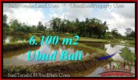 TANAH MURAH di UBUD JUAL 61 Are View Sawah, link. villa